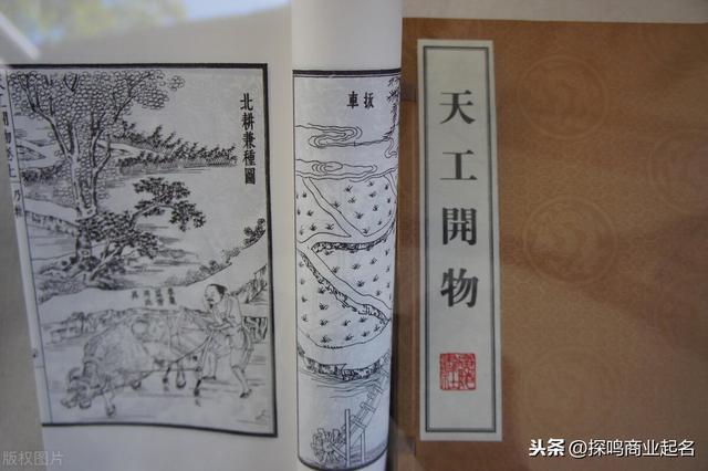 魏峰的奇妙宠物名称大全播放旅游 - 可爱的观点图1